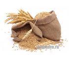 Зерновой набор Ржаной Эль от Фомы Менделеева
